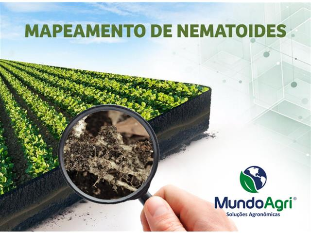 Nematoide - Mapeamento