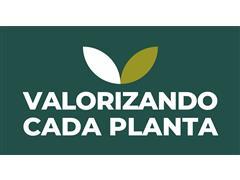 Valorizando Cada Planta - Geração Agro