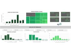 BI (Business Intelligence) - agriBI - 1