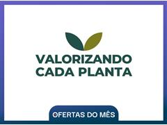 Valorizando Cada Planta - Geração Agro - 0