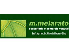 Visita técnica - M. Melarato - 3