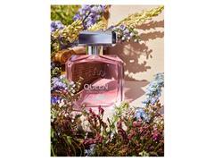 Perfume Antonio Banderas Queen Of Seduction Lively Muse Fem EDT 50ML - 2