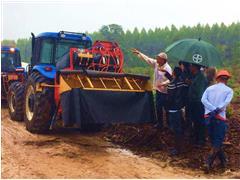 Semana PEP para empresas florestais - Seta