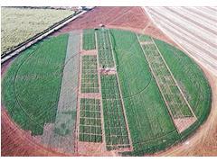 Pesquisa e Desenvolvimento Agronômico – Planeje