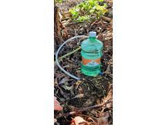 Indicador de Irrigação Média Pitaya Tensão de Água no Solo de 25 kPa - 2