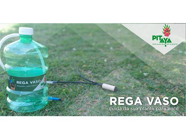 Rega Vaso Pitaya 1 Litro
