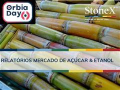 Relatórios para o Mercado de Açúcar & Etanol - StoneX - 0