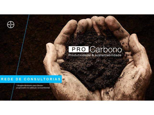 Consultorias técnicas PRO Carbono