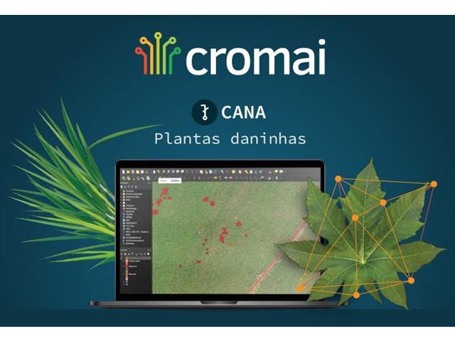 Cromai Plantas Daninhas