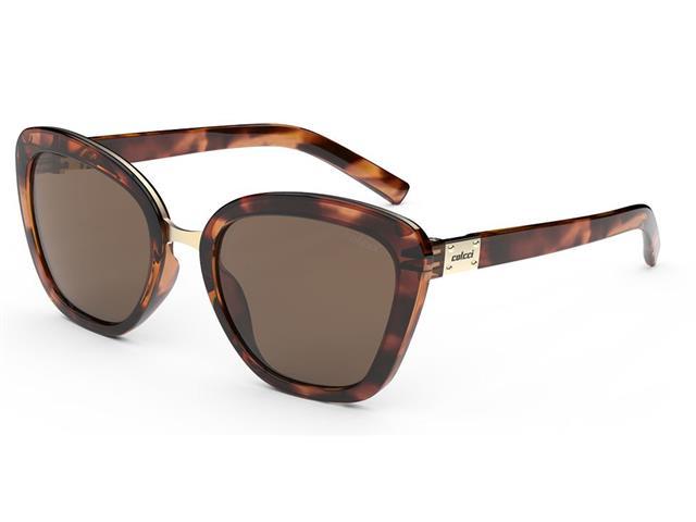 Óculos de Sol Colcci Céu Demi Marrom Brilho Lente Marrom