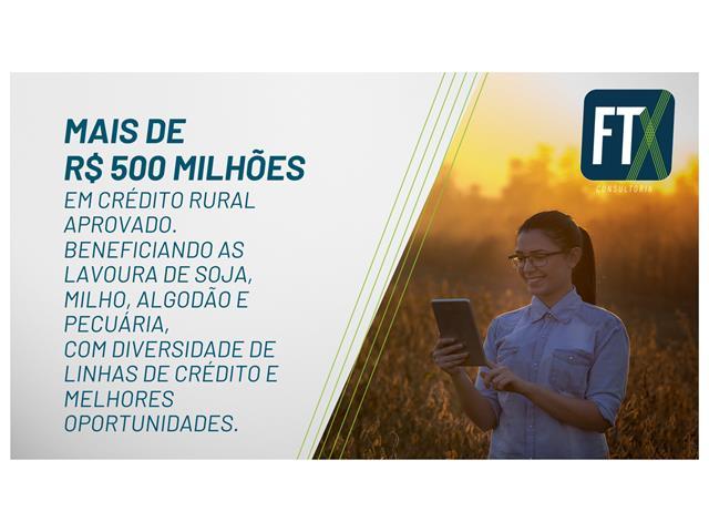 Elaboração de PROJETOS AGROPECUÁRIOS - FTX