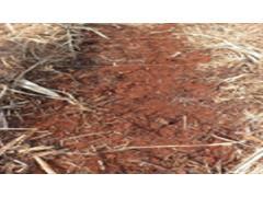 Ensaio de eficácia e seletividade de herbicidas - F&S - 1