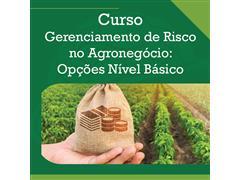 Gerenciamento de Risco no Agronegócio: Opções Nível Básico - AAGRO