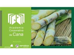 Academia Corporativa da CANA - Gestão Agronômica - Curso Completo