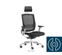 Cadeira Fit Presidente - 0
