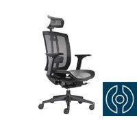 Cadeira Airys Presidente