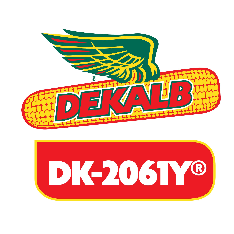 Semilla de Maíz DK-2061Y Tratada Acceleron
